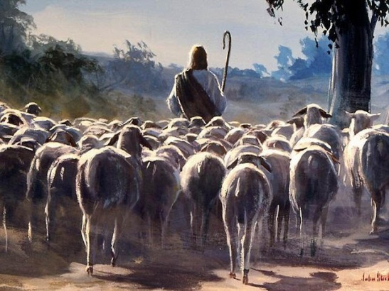 Jesus - Pastor - Ovejas