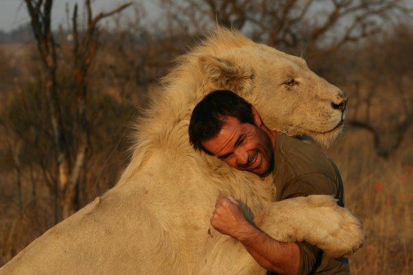 Abrazo León