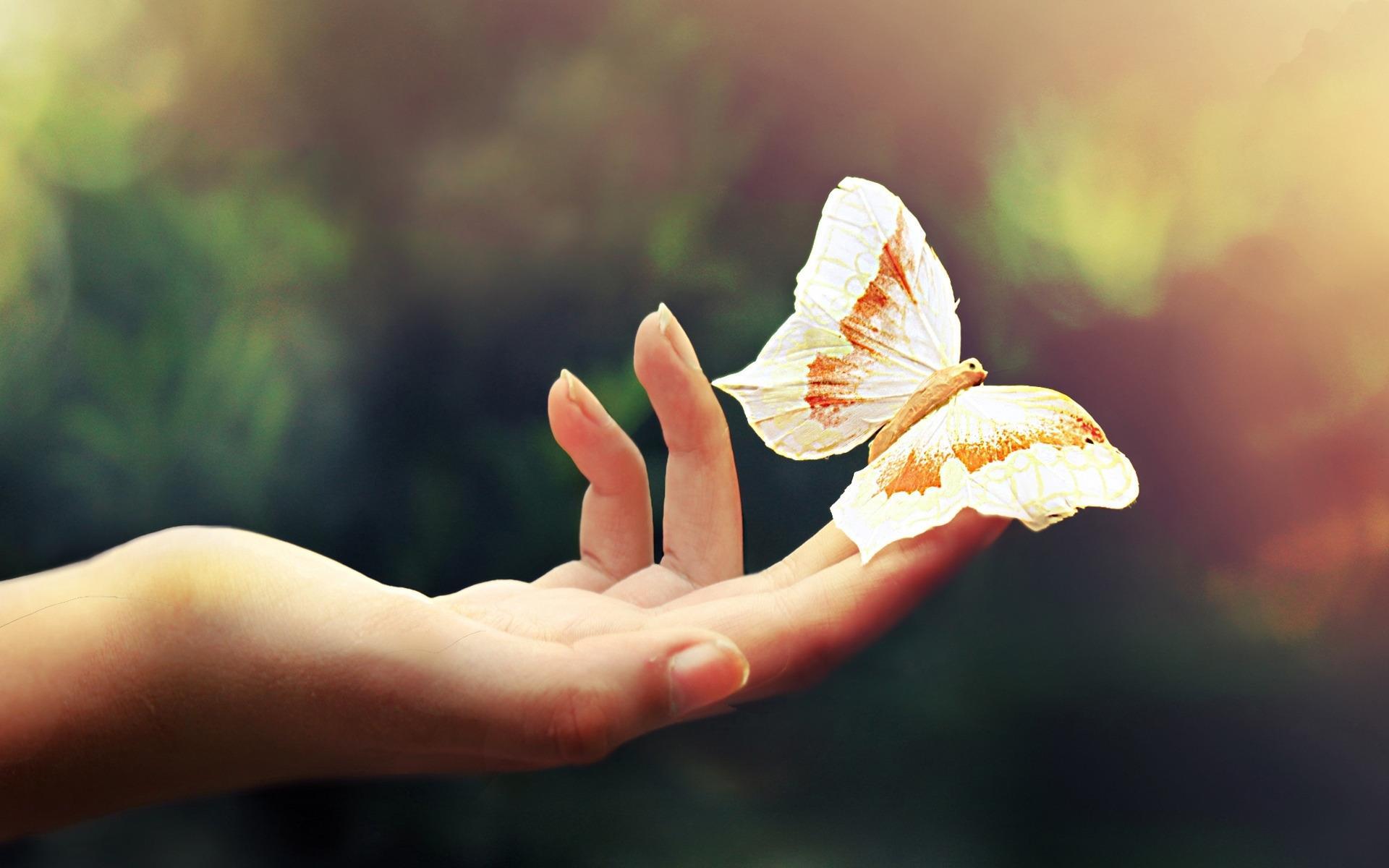 Mujer - Mano - Mariposa