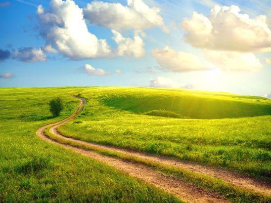 Camino - Pradera