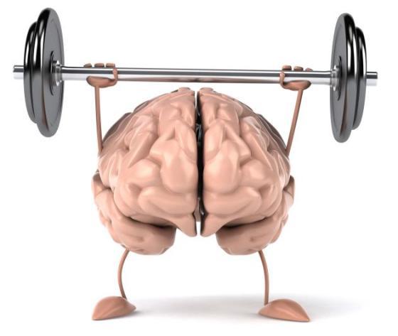 Fortalecer Mente - Cerebro