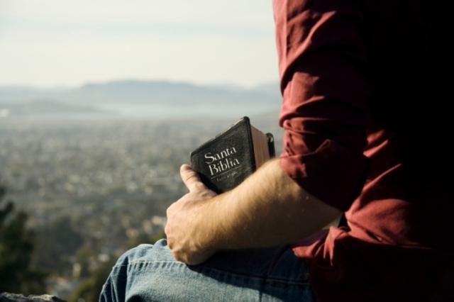 Hombre -Campo - Biblia