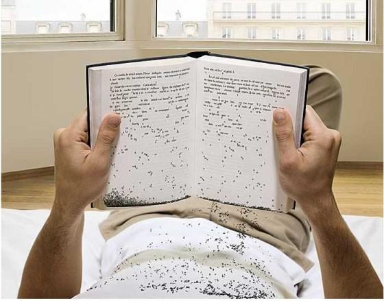 Palabras - Libro - Lectura