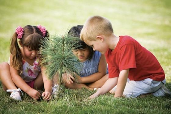 Niños Plantando Arbol