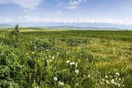 58379980-la-hermosa-monta-as-verdes-praderas-de-paisajes-nalati