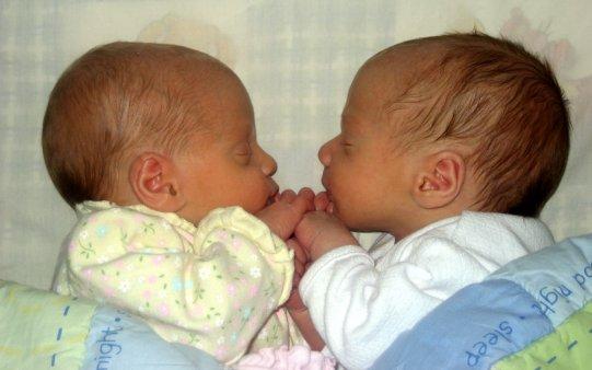 gemelos.jpg