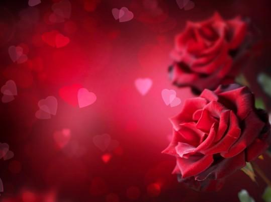 Imagenes-con-corazones-y-rosas-bellas