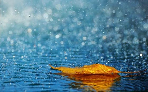lluvia-de-otoño