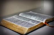 Amando a Dios, día345