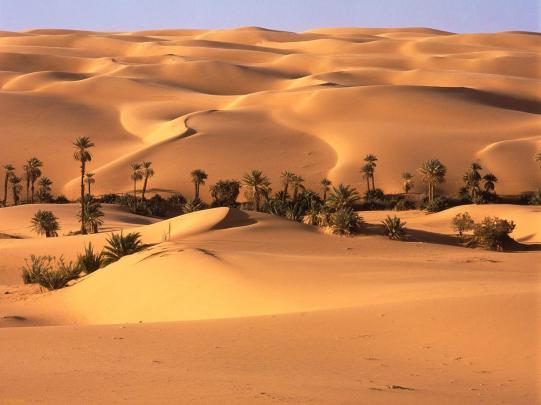 Oasis_Desierto_de_Libia-430167
