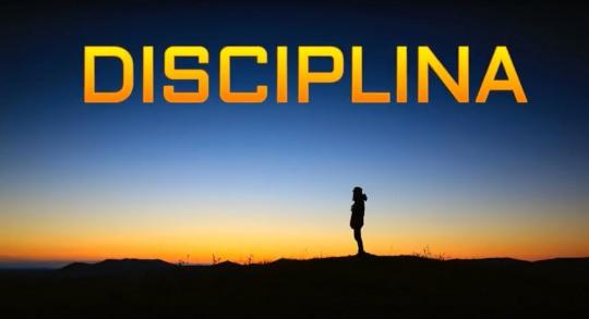 disciplina.jpg