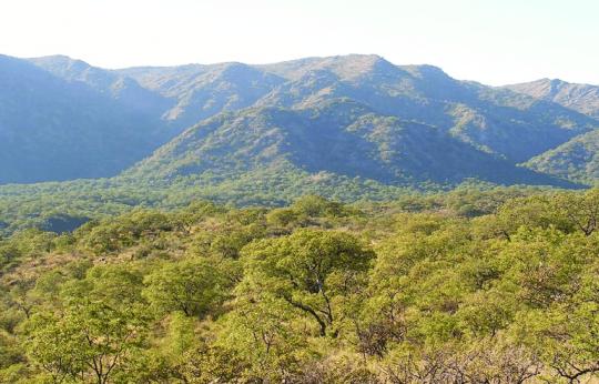 Figura-5-Unidad-de-Paisaje-natural-monte.png
